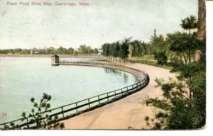 "5.01 CPC - ""Fresh Pond Drive Way, Cambridge, Mass."" ca.1908 [Robbins Bros., Boston, MA] *"