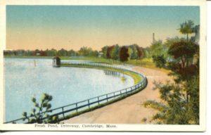 "5.05 CPC - ""Fresh Pond, Driveway, Cambridge, Mass."" ca. 1920-1929 [M. Abrams, Roxbury, MA]"