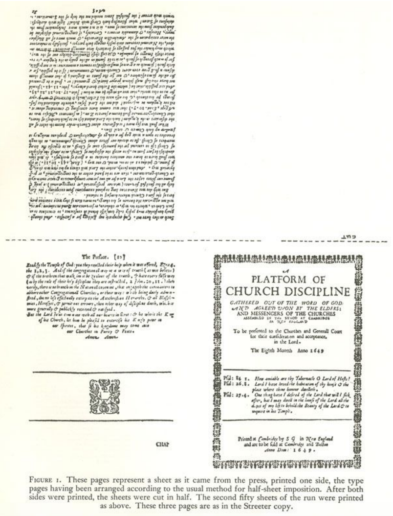 A Sheet As It Came From The Press